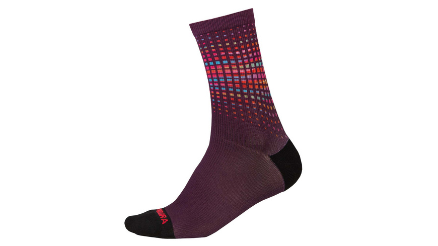 Endura - PT Socken LTD - Velosocken